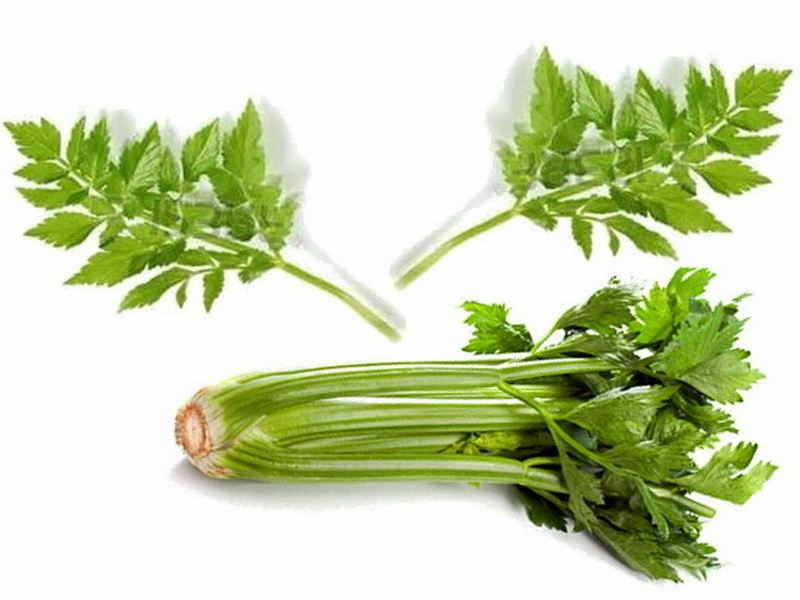 Celery Benefits For Hair