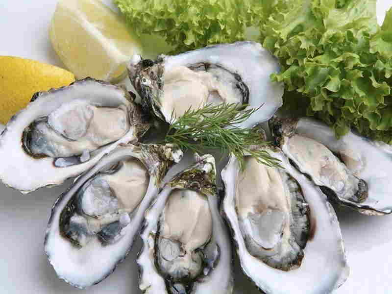 Oyster Benefits For Hair